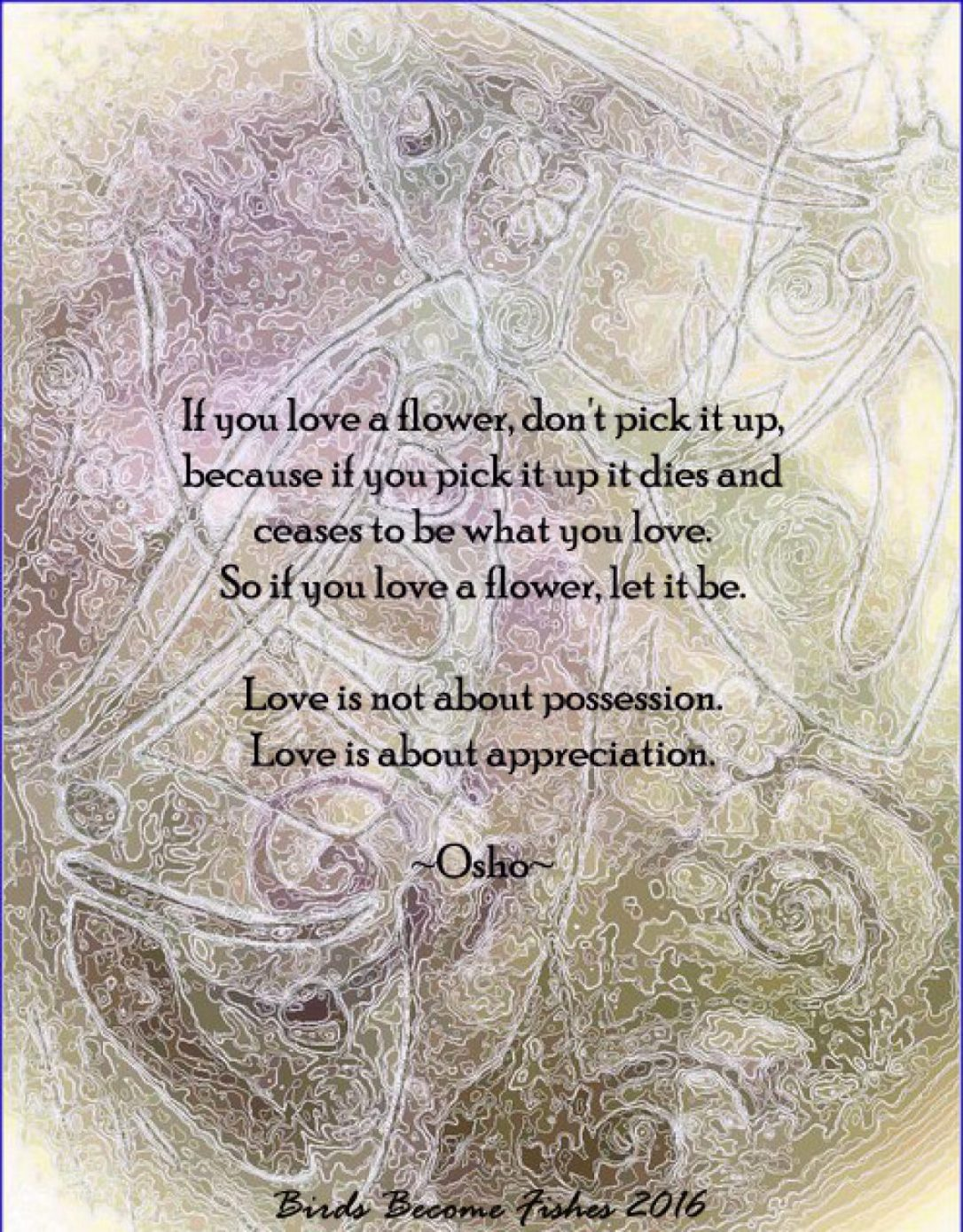 cropped-osho-flower-quote.jpg